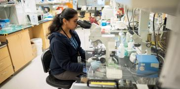 Researcher using microscope.