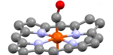 Molecular structure of carboxyhemoglobin