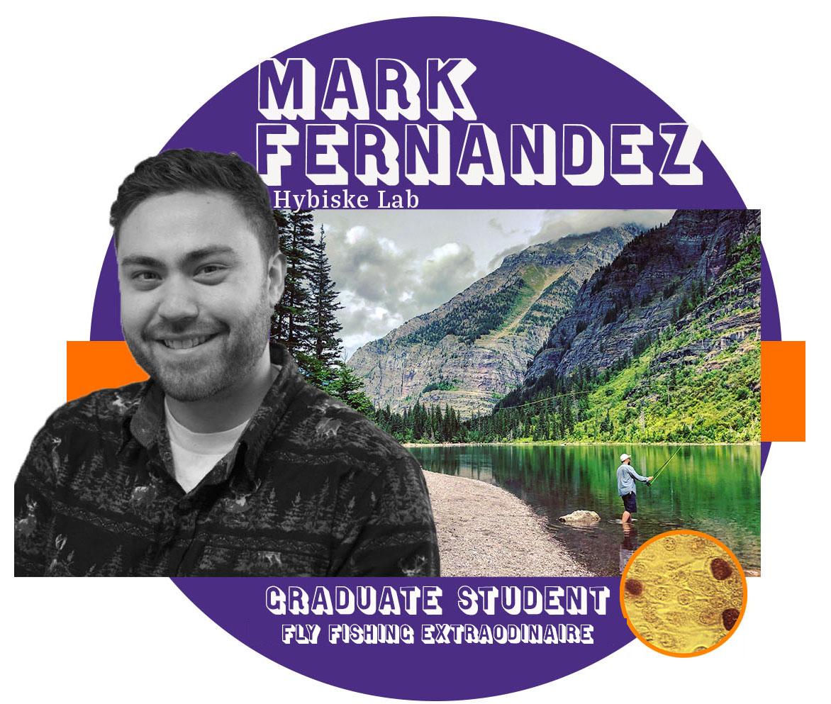 Mark Fernandez Spotlight